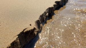 planerium-beach-sand-1-300x169