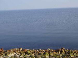 planerium-sea-1-300x225