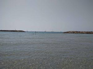 planerium-sea-2
