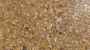 planerium-sea-shore-sand-1-300x169