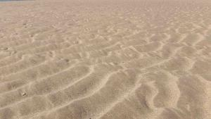 planerium-sea-shore-sand-4-300x169