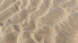 planerium-sea-shore-sand-5-300x169