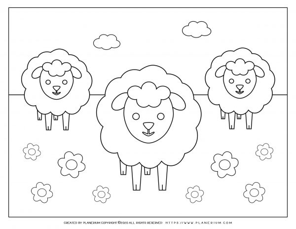 Easter coloring page - Three lambs in a flower field