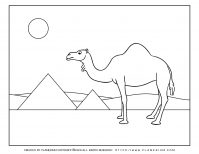 Passover coloring page - Camel and Pyramids