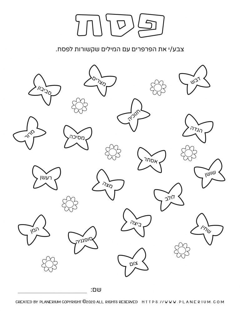 Passover worksheet - Related words on butterflies - Hebrew