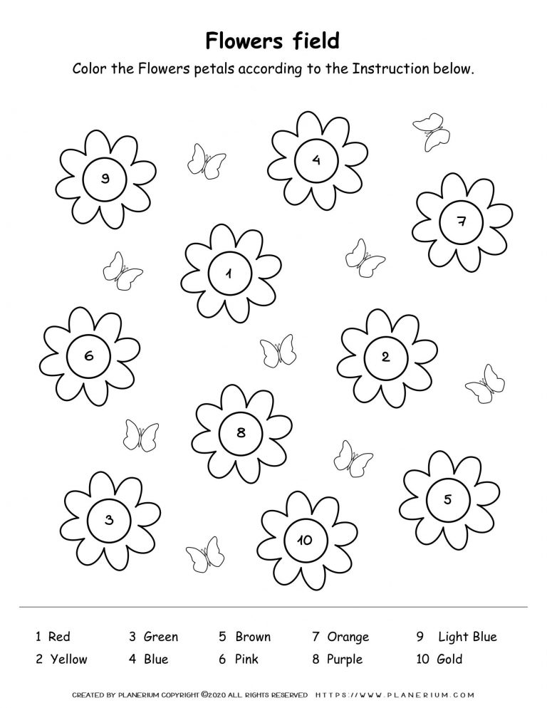 Spring coloring worksheet color flowers petals