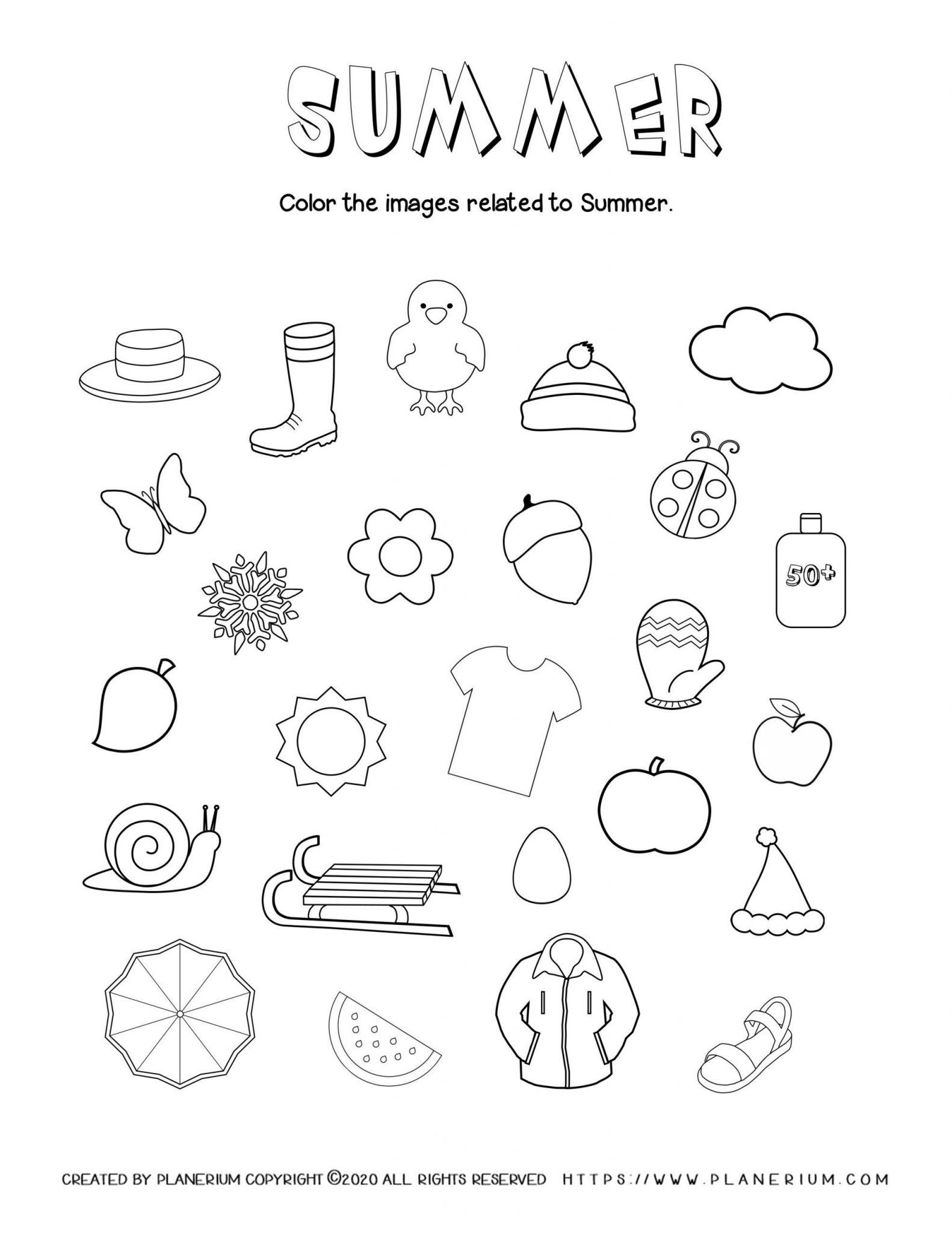 Summer - Worksheet - Summer related items