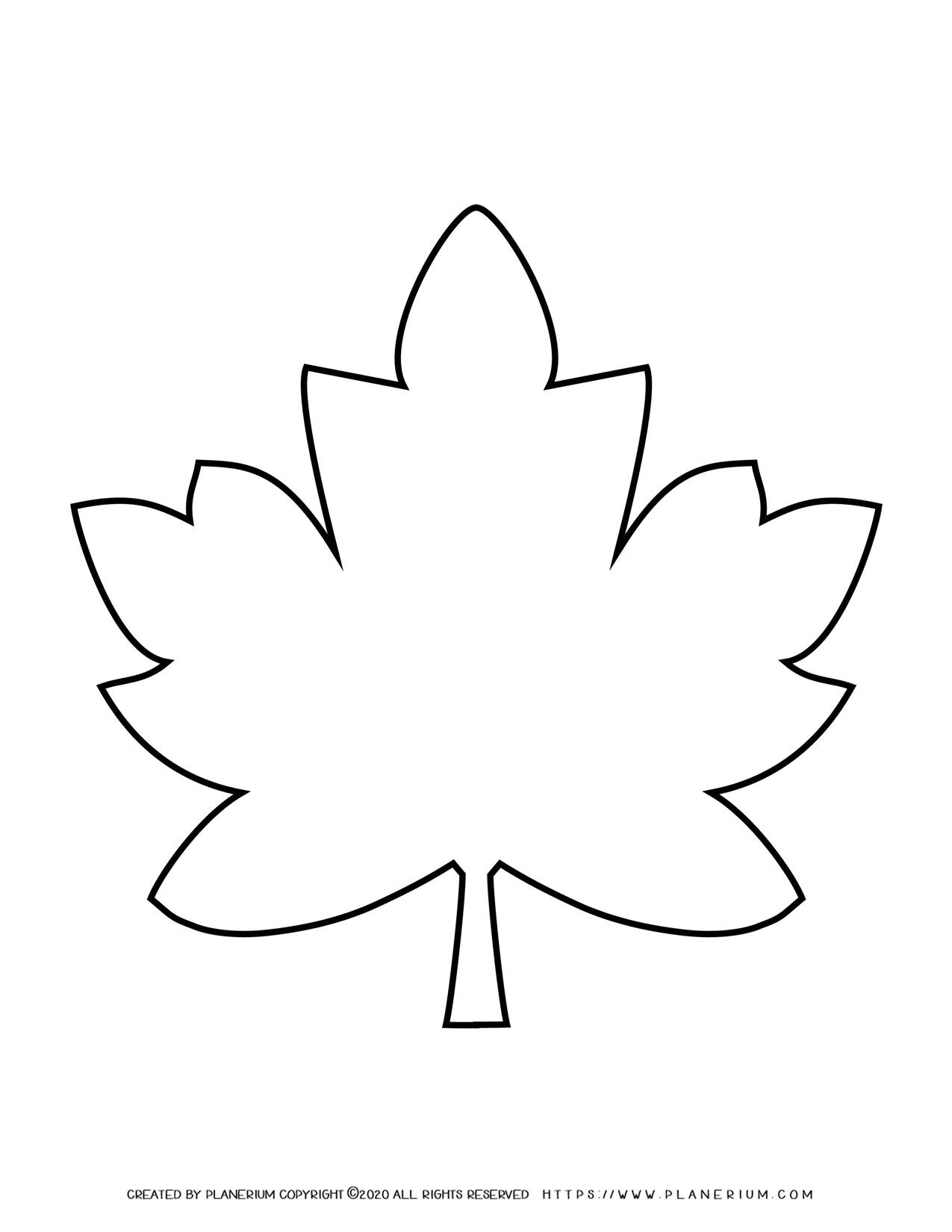 Fall Season - Coloring Page - Maple Leaf Template