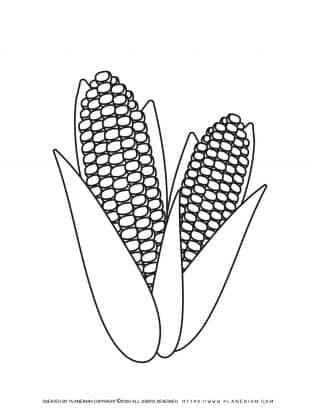 Corn - Coloring Page   Planerium