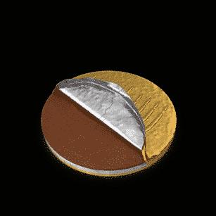 Hanukkah Gelt Coin Half Covered | Planerium