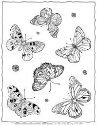 Adult Coloring Pages with Six Butterflies | Planerium