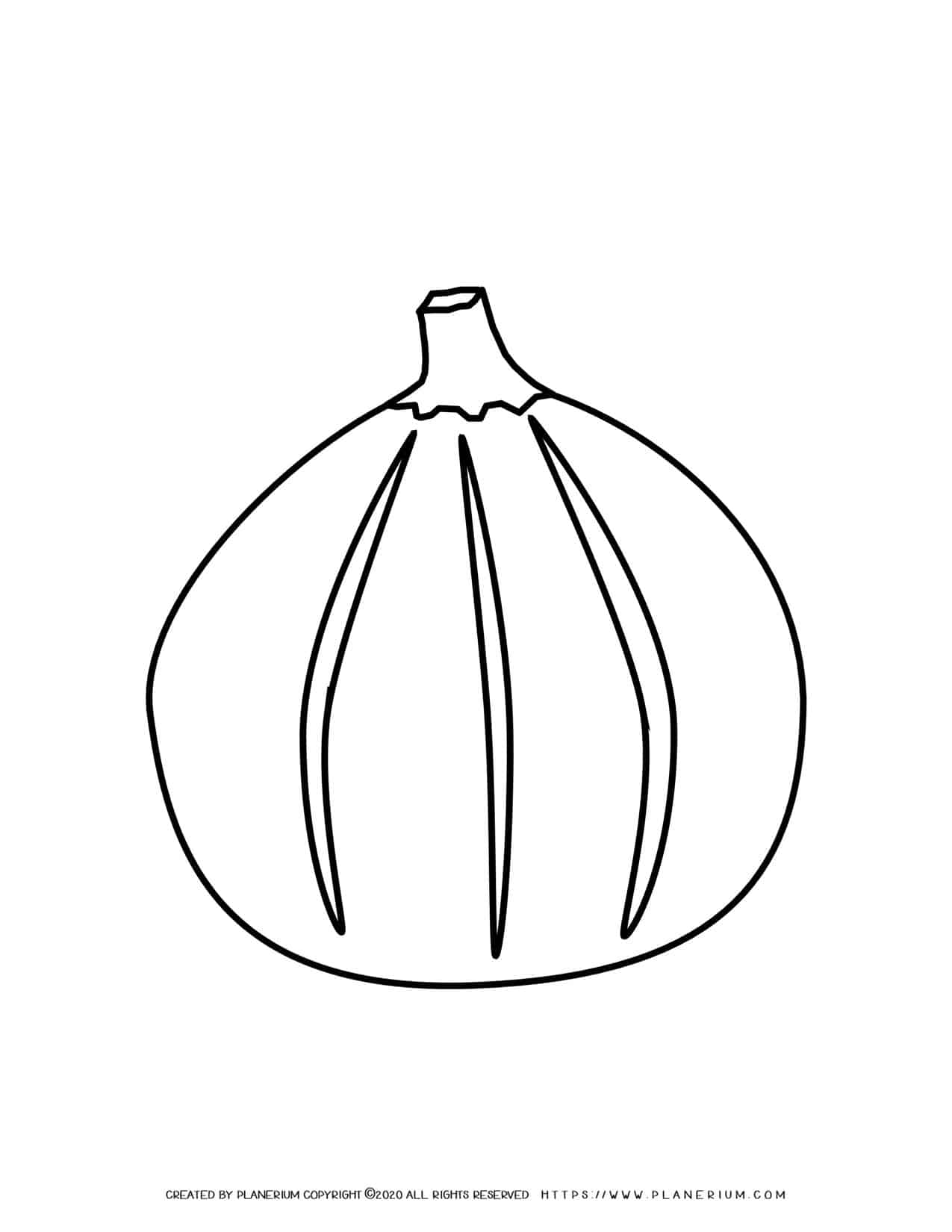 Fig - Coloring page | Planerium
