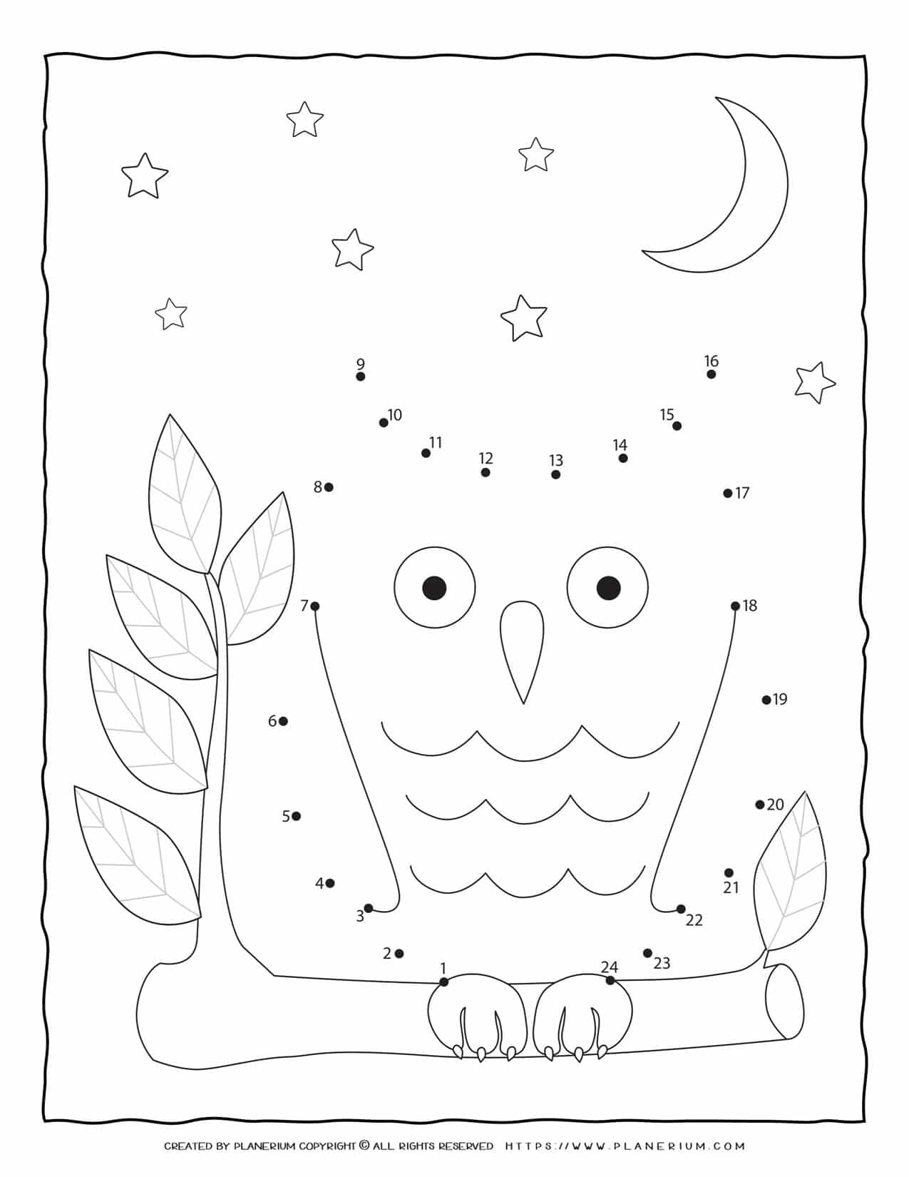 Owl - Connect The Dots | Planerium