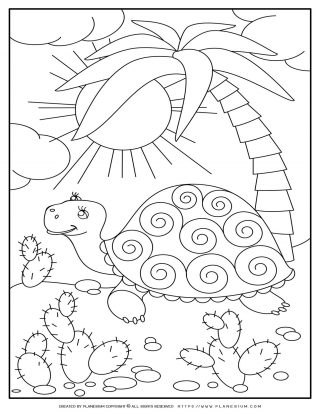 Turtle And Palm Tree | Planerium