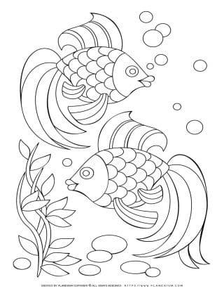 Two Fish Underwater | Planerium