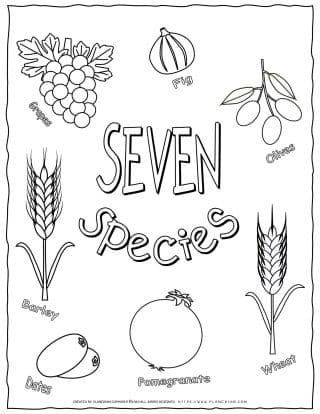 Shavuot Coloring Page - The Seven Species with English Titles | Planerium