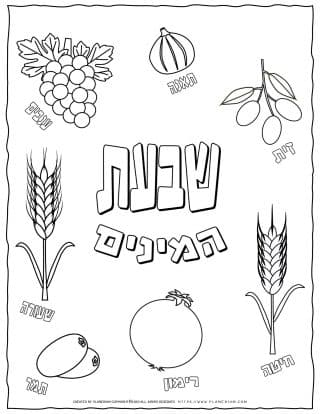 Shavuot Coloring Page - The Seven Species with Hebrew Titles | Planerium