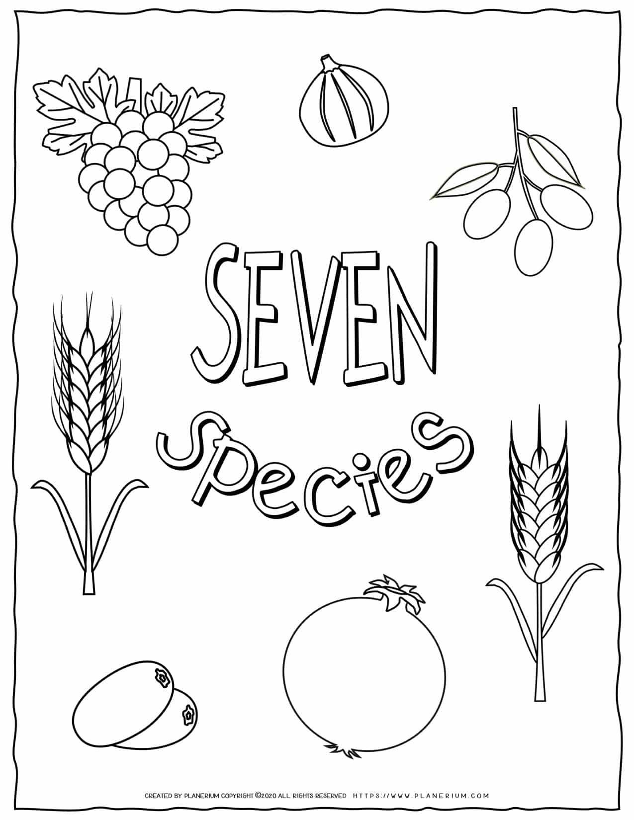 Shavuot Coloring Page - The Seven Species | Planerium