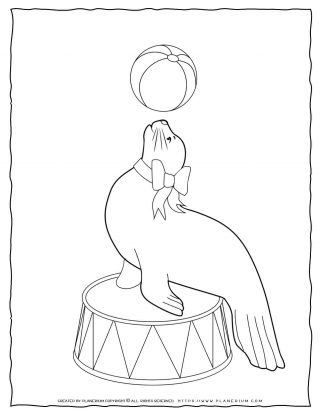 Circus Coloring Page - Seal with a Ball | Planerium
