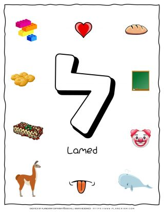 Hebrew Alphabet - Objects That Starts With Letter Lamed | Planerium