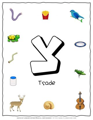 Hebrew Alphabet - Objects That Starts With Letter Tsade | Planerium
