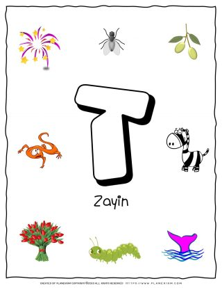 Hebrew Alphabet - Objects That Starts With Letter Zayin | Planerium