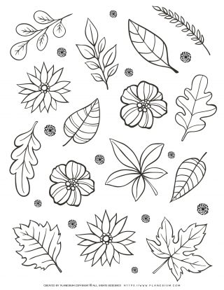 Adult Coloring Page - Flowers And Leaves | Planerium