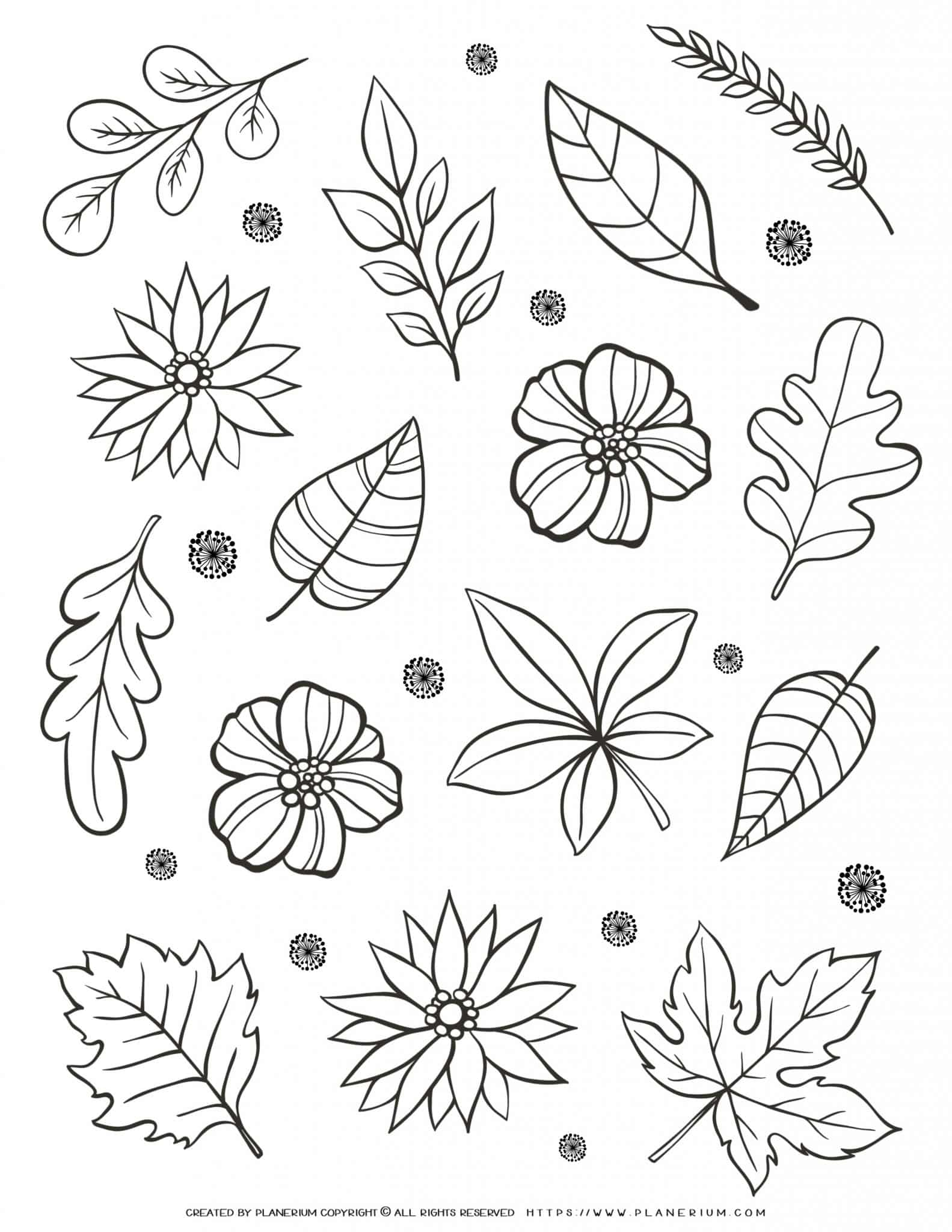Adult Coloring Page - Flowers And Leaves   Planerium