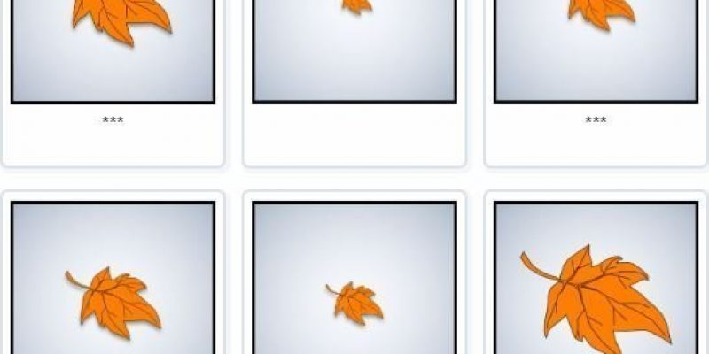 Fall season Compare Sizes – Image Sequencing